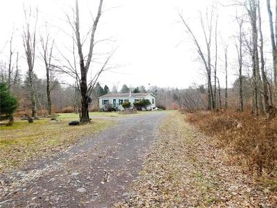 Mongaup Valley NY Single Family Home For Sale: $80,000