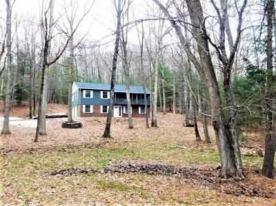 Callicoon Single Family Home For Sale: 8733 State Route 97