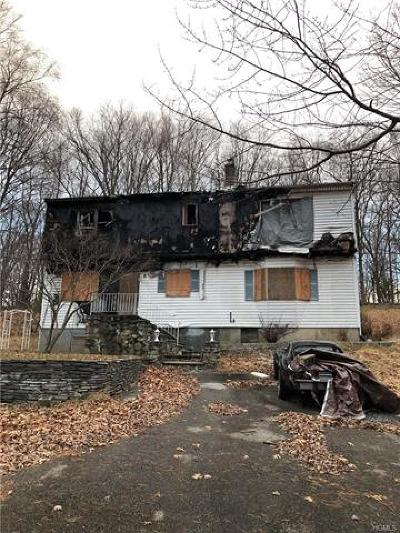 Westchester County Single Family Home For Sale: 1260 Wilson Road