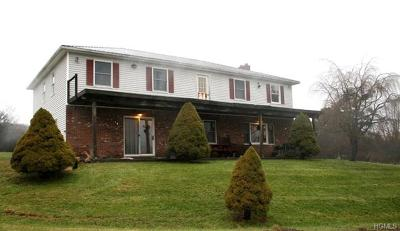 White Sulphur Spring NY Single Family Home For Sale: $399,000