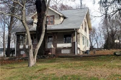 Westchester County Single Family Home For Sale: 20 School Street