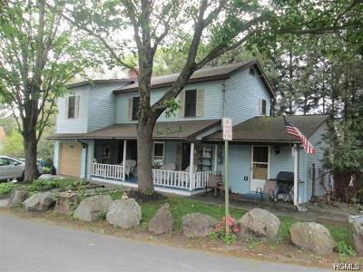 Narrowsburg NY Single Family Home For Sale: $150,000