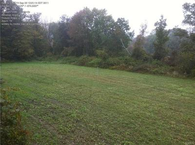 Orange County, Sullivan County, Ulster County Residential Lots & Land For Sale: Mt Hope Road & Guymard Turnpike