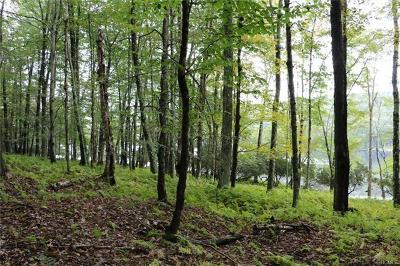 Residential Lots & Land For Sale: Lot 39 Kenoza Trail
