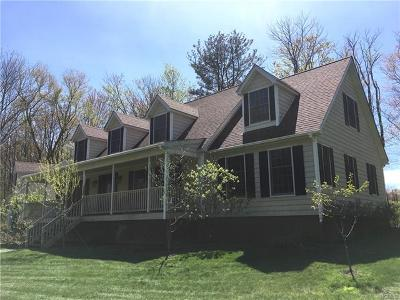 Livingston Manor Single Family Home For Sale: 108 Clearwater Estates Drive