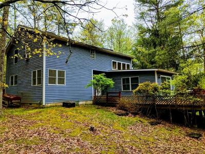 Sullivan County Single Family Home For Sale: 3 Marko Drive