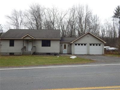 Kerhonkson Single Family Home For Sale: 445 Samsonville Road