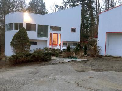 Westchester County Single Family Home For Sale: 31 Winterbottom