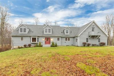 Dutchess County Single Family Home For Sale: 845 Cold Spring Road
