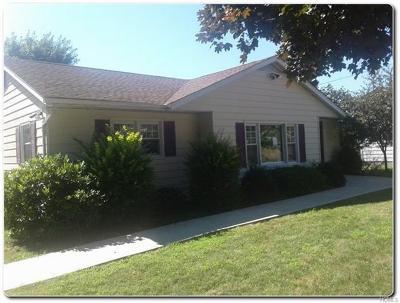 New Windsor Single Family Home For Sale: 69 Birchwood Drive