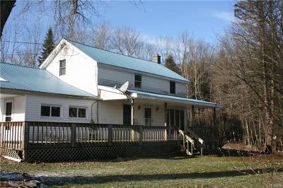 Livingston Manor NY Single Family Home For Sale: $155,000