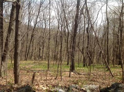 Stormville Residential Lots & Land For Sale: 495 Stormville Mountain Road