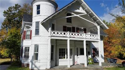 Washingtonville Single Family Home For Sale: 36 North Street