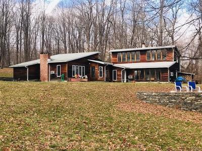 New Paltz Single Family Home For Sale: 445 Plutarch Road