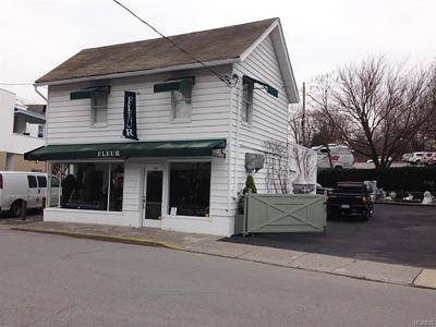 Mount Kisco Commercial For Sale: 10 Dakin Avenue