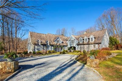Westchester County Single Family Home For Sale: 141 Lower Shad Road