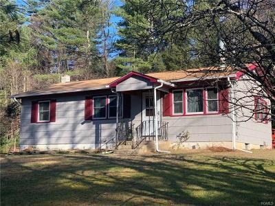 Sullivan County Single Family Home For Sale: 174 Taras Shevchenko Road