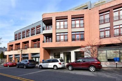 Hastings-On-Hudson Condo/Townhouse For Sale: 45 Main Street #4B
