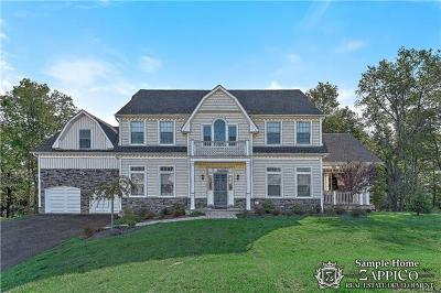 Chappaqua Single Family Home For Sale: 9 Point Place