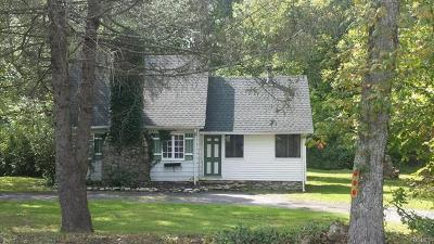 Pine Bush Single Family Home For Sale: 384 Lakeshore Drive