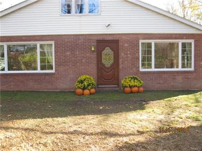 Dutchess County Single Family Home For Sale: 31 Cosmo Drive
