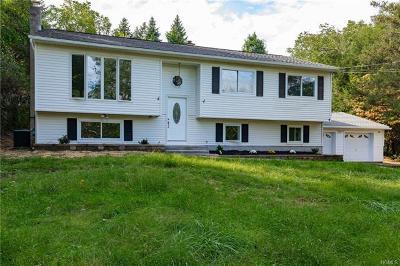 Dutchess County Single Family Home For Sale: 178 Hillside Lake Road