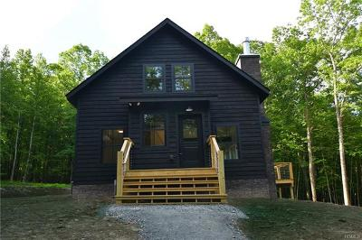 Narrowsburg NY Single Family Home For Sale: $375,000