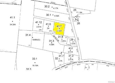 Sullivan County Residential Lots & Land For Sale: Lot 41.7 Coopers Corner Road