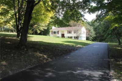 Dutchess County Single Family Home For Sale: 118 Charwill Drive