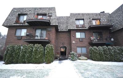 Ossining Condo/Townhouse For Sale: 1 Briarcliff Drive South #14