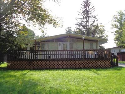Kauneonga Lake NY Single Family Home For Sale: $94,900