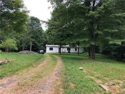 Mongaup Valley NY Single Family Home For Sale: $125,000