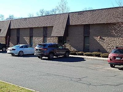 Valley Cottage Commercial For Sale: 153 Route 303