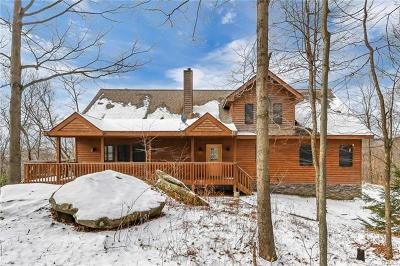 Livingston Manor NY Single Family Home For Sale: $375,000