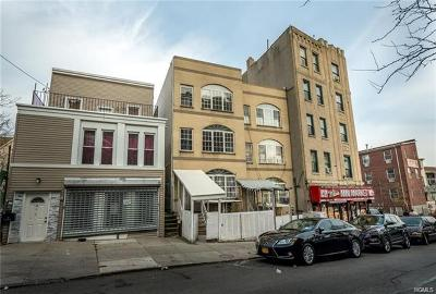 Bronx Multi Family 2-4 For Sale: 873 East 175th Street