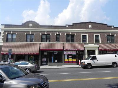 New Rochelle Rental For Rent: 675 Main Street #Bsmt
