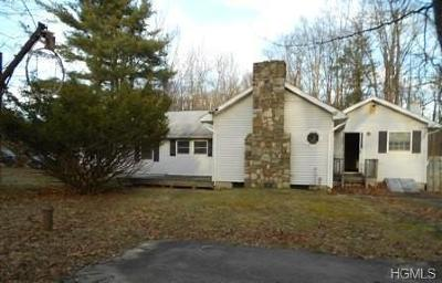 Single Family Home For Sale: 2490 County Route 1