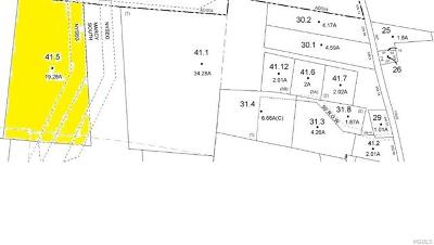 Residential Lots & Land For Sale: Lots 41.5 Coopers Corner Road