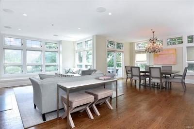 Hastings-On-Hudson Condo/Townhouse For Sale: 10 Old Jackson Avenue #74