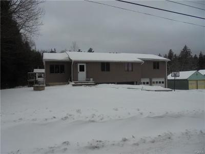 Parksville NY Single Family Home For Sale: $149,999
