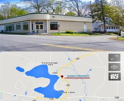 Sullivan County Commercial For Sale: 136 Lake Street