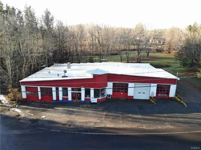 Sullivan County Commercial For Sale: 94 Broadway