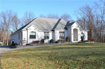 Wappingers Falls Single Family Home For Sale: 47 Marie Court