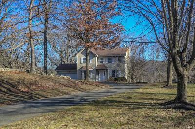 Rockland County Single Family Home For Sale: 96 South Grant Street South