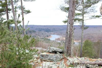 Narrowsburg Residential Lots & Land For Sale: 1 Eagle View Road