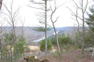 Narrowsburg Residential Lots & Land For Sale: 12 Eagle View Road
