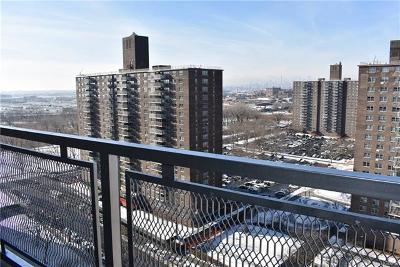 Co-Operative For Sale: 880 Boynton Avenue #17F