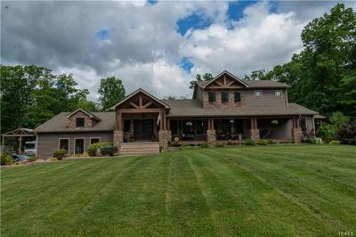 Pine Bush Single Family Home For Sale: 253 Sinsabaugh Road