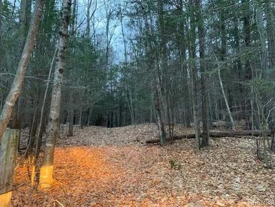 Fallsburg Residential Lots & Land For Sale: Muthig Road Tr 79