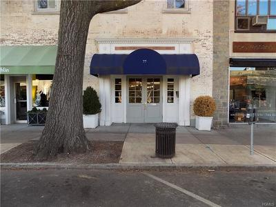 Bronxville Commercial For Sale: 77 Pondfield #1F2B